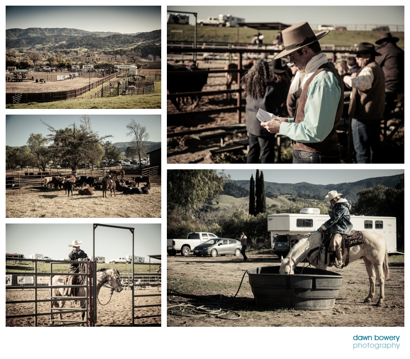 los angeles documentary photographer santa ynez rodeo horses